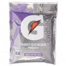 Original Powdered Drink Mix, Riptide Rush, 8.5 Oz Packets